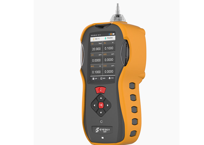IP66 Portable Combustible Gas Detector Six Gas Analyser